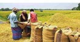 মনিরামপুরে বোরো সংগ্রহ কার্যক্রমের উদ্বোধন