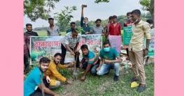 উপজেলায় ৫ হাজার বৃক্ষ রোপণের উদ্যোগ দিয়েছে 'মনিরামপুর গ্রুপ'