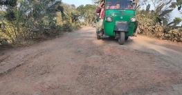 'যশোর-মাগুরার' 'ধলগা-শালিখা' সড়কের বেহাল দশা